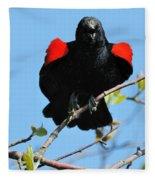 Red Wing Blackbird 1 Fleece Blanket
