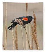 Red-wing Blackbird Fleece Blanket