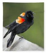 Red-winged Blackbird Display Fleece Blanket