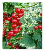 Redcurrant Berries Fleece Blanket