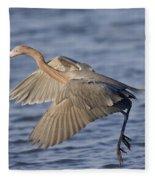 Reddish Egret Dance Fishing Fleece Blanket