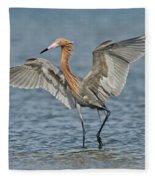 Reddish Egret Fishing Fleece Blanket