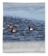Redhead And Scaups Ducks Fleece Blanket