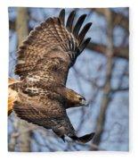 Redtail Hawk Fleece Blanket