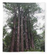 Redwood Fairy Ring Close Fleece Blanket