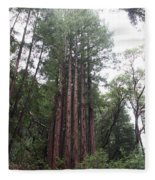 Redwood Fairy Ring Fleece Blanket