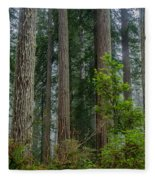 Redwood Lineup Fleece Blanket