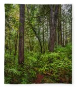 Redwoods 2 Fleece Blanket