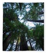 Redwoods II Fleece Blanket