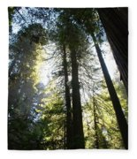 Redwoods IIII Fleece Blanket