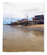 Reeds Beach Panorama - New Jersey Fleece Blanket