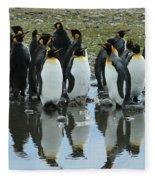 Reflecting King Penguins Fleece Blanket