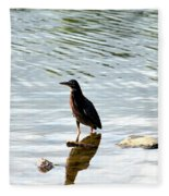 Reflection Of The Green Heron Fleece Blanket