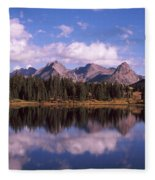 Reflection Of Trees And Clouds Fleece Blanket