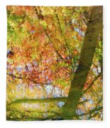 Reflections Of A Colorful Fall 001 Fleece Blanket