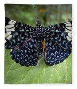 Regal Blue Butterfly Fleece Blanket