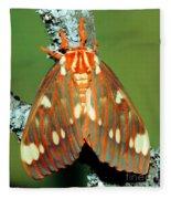 Regal Moth Fleece Blanket