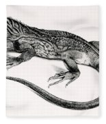 Reptile Fleece Blanket