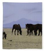 Reservation Horses 4 Fleece Blanket