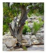 Resilient Tree Fleece Blanket