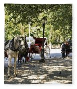 Rest Stop - Central Park Fleece Blanket