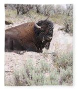 Resting Bison Fleece Blanket