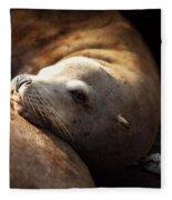 Resting On The Pier Fleece Blanket
