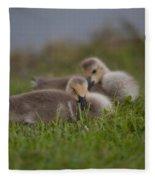 Resting Our Eyes Fleece Blanket