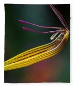 Restrepias Orchid Fleece Blanket