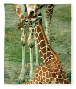 Reticulated Giraffe And Calf Fleece Blanket