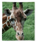 Reticulated Giraffe Fleece Blanket