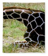 Reticulated Giraffe On Ground Fleece Blanket