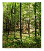 Wooded Path 13 Fleece Blanket