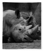 Rhinos Fleece Blanket