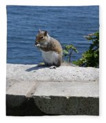 Rhode Island Squirrel Fleece Blanket