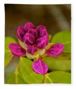Rhododendron Bud Fleece Blanket