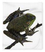 Ribbeting Frog In A Bucket Fleece Blanket