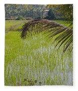 Rice Paddy Fleece Blanket