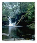 Ricketts Glen Falls 016 Fleece Blanket