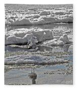 Riding The Ice Flow  Fleece Blanket