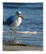 Ring-billed Gull With Its Catch Fleece Blanket