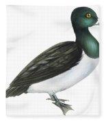 Ring-necked Duck  Fleece Blanket