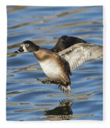 Ring-necked Duck Landing Fleece Blanket