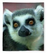 Ring Tailed Lemur-2 Fleece Blanket