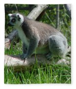 Ring Tailed Lemur Fleece Blanket