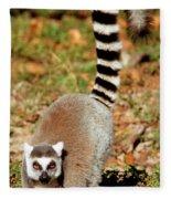 Ring-tailed Lemur Lemur Catta Walking Fleece Blanket