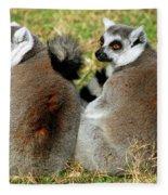Ring-tailed Lemurs Lemur Catta Fleece Blanket