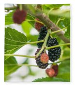 Ripe Mulberry On The Branches Fleece Blanket