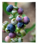 Ripening Blueberries Fleece Blanket