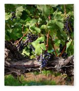 Ripening Grapes Fleece Blanket